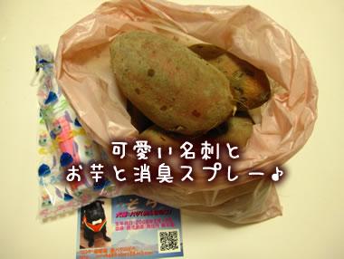 2009_12_13_092